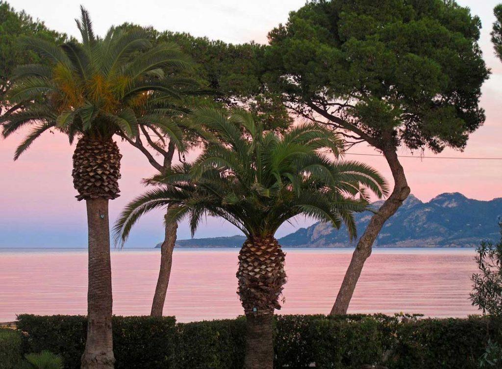 Immobilien Bellavista Mallorca