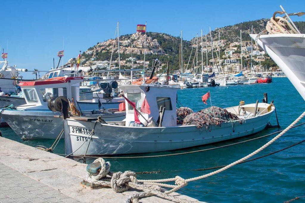 Kaufen oder Mieten im Südwesten von Mallorca