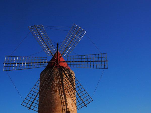 Immobilien Tolleric Mallorca