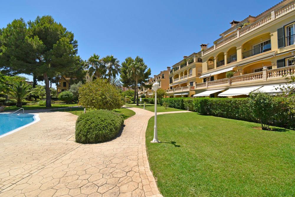 Wohnung auf Mallorca kaufen